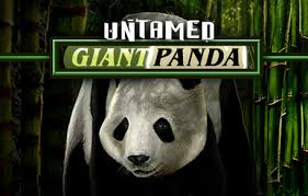 UNTAMED GIANT PANDA at vegas paradise casino