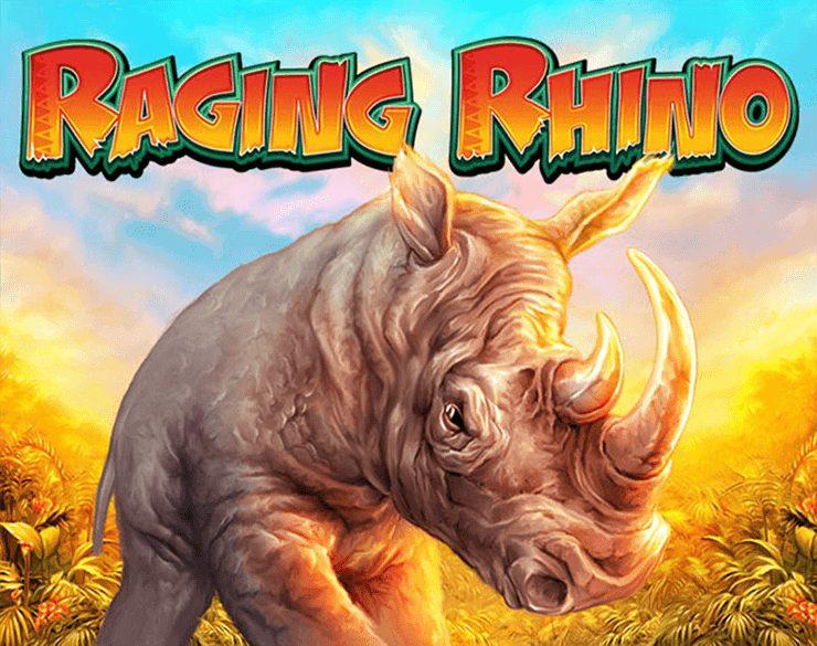 Raging Rhino at fruity king