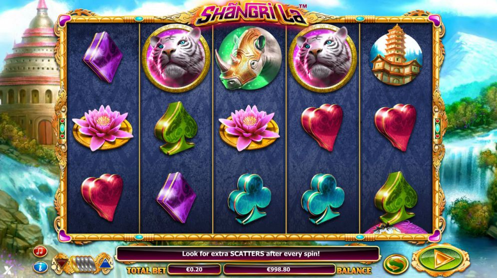Shangri-La at chomp casino