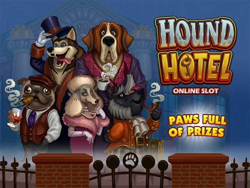 Hound Hotel at fruity king