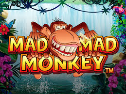 Mad Mad Monkey at spins royale