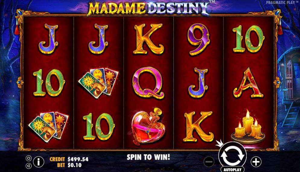 Madame Destiny at chomp casino