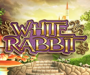 White Rabbit at dazzle casino